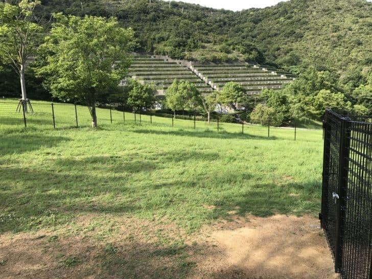IMG_0008-1 【解決済】赤穂ピクニック公園ドッグラン草ボウボウ問題